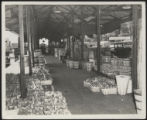 Assembly Street, peaches and tomatoes under shed, 1946